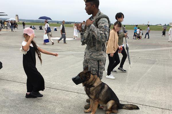 日米友好祭 軍用犬